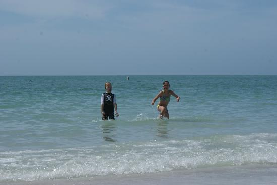 Fort De Soto Park: In the clean water with sandy bottom