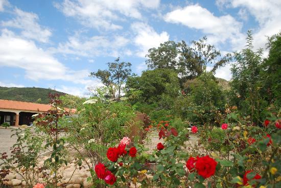 Casper Lodge : A wide range of tropical highland plants