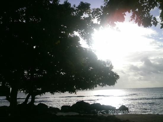 InterContinental Mauritius Resort Balaclava Fort: am Strand