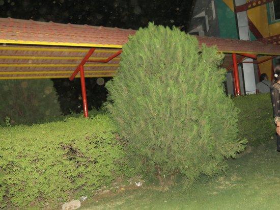 The Crescent Resort & Club : Main structure of restaurant