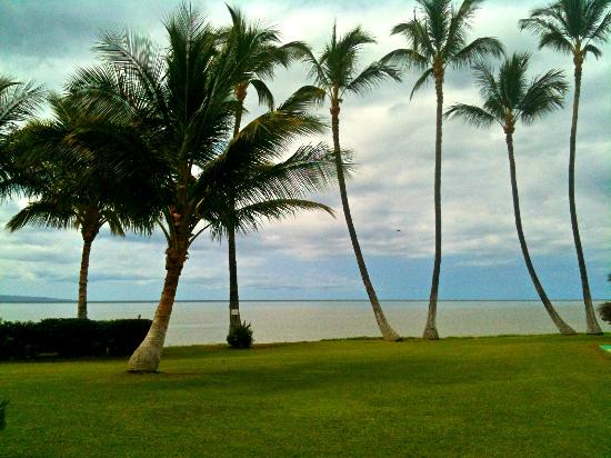 Castle Molokai Shores - View from Beach