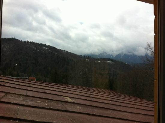Cabana Trei Brazi: View from the room