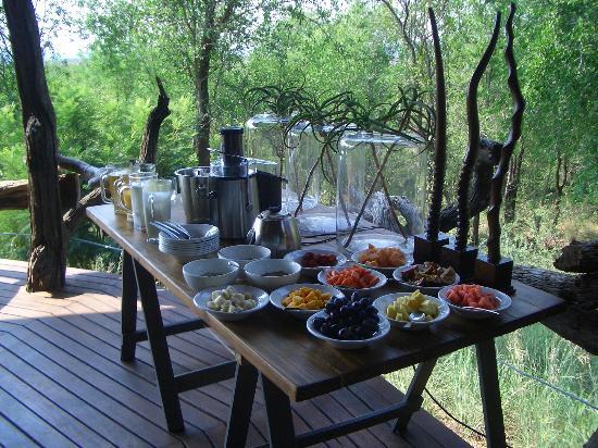 Madikwe Safari Lodge: Frühstücksbuffet