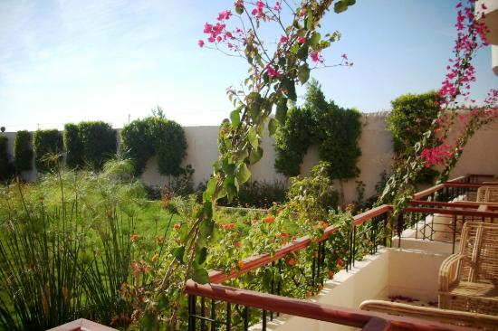 New Memnon Hotel: View from balcony