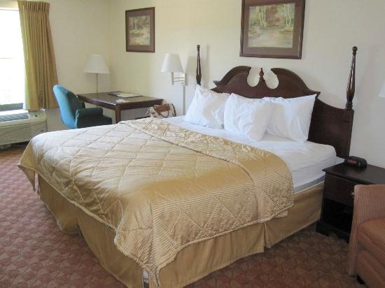 Comfort Inn & Suites : Firm, Comfortable Bed