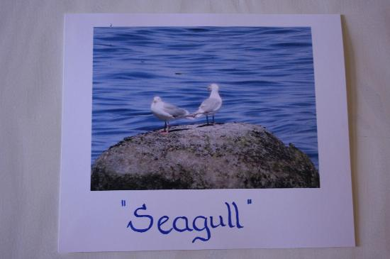 Morning Glory by the Sea: Seagull Room