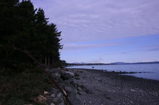 Morning Glory by the Sea: Towards Campbell River