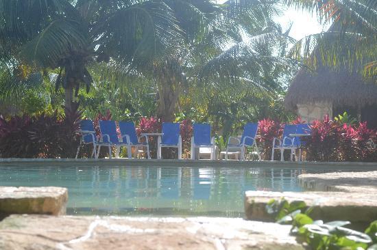 Amarte Hotel: pool 2