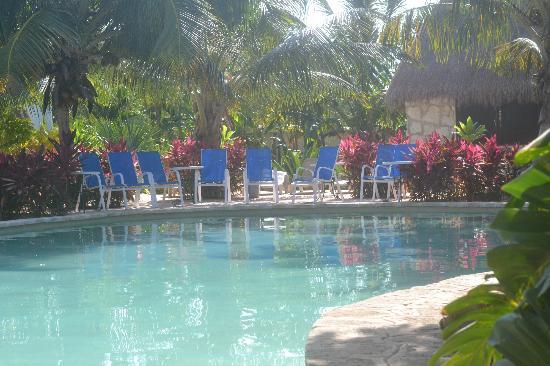 Amarte Hotel: pool