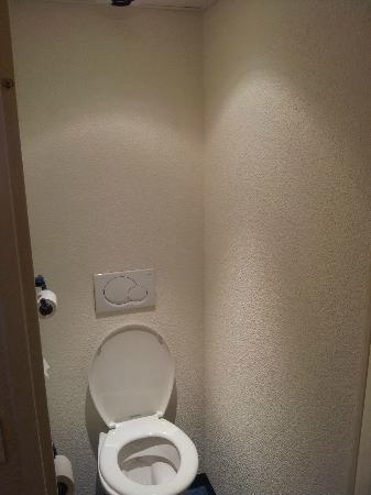 Ibis Budget Orleans sud Parc des Expos: Small WC