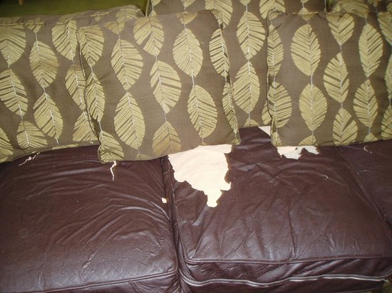 Hampton Inn & Suites Fort Myers Beach / Sanibel Gateway: lobby sofa 2