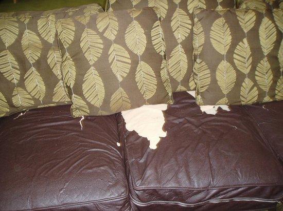 هامبتون إن آند سويتس فورت مايرز بيتش: lobby sofa 2