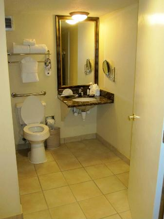 Crowne Plaza  Resort Asheville : Small sink, no surface space, makeup mirror & NO OUTLET