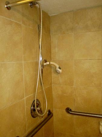 "Crowne Plaza  Resort Asheville: Nice ""European"" style shower with tile throughout"