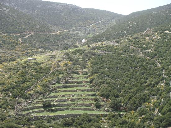 Agios Andreas Acropolis & Museum: Uphill, looking to th esouth