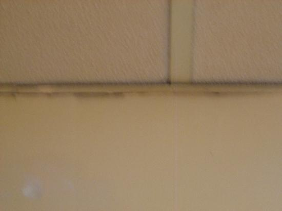 The Dukeries Hotel: dirty ceiling tiles