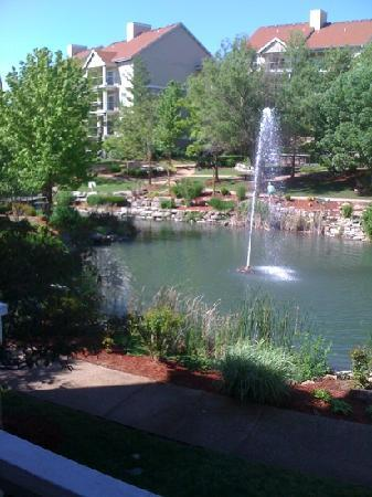 Wyndham Branson at The Meadows: the view from our room!!!