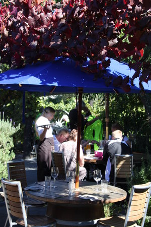 Red Shed Restaurant: sit amongst the vines