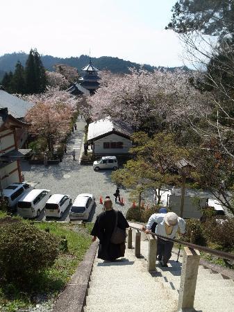Yoshino Chogu Ruins: 蔵王堂からみた吉野朝宮跡方面