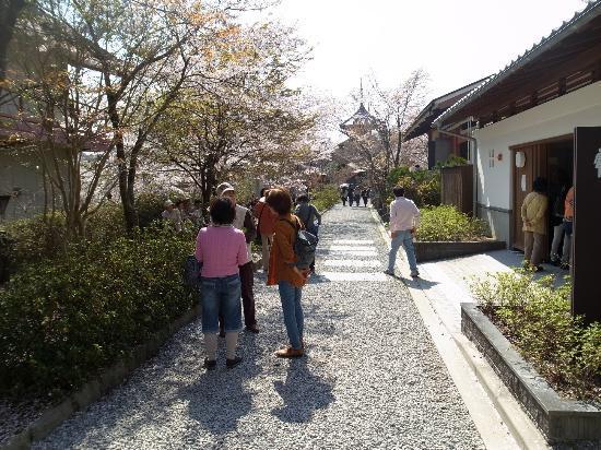 Yoshino Chogu Ruins: 吉野朝宮跡/公園風になっている