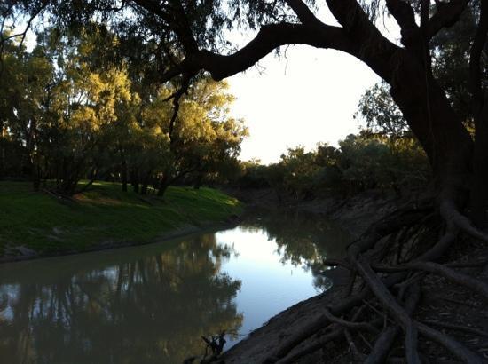 Nolan's on the Barwon : the Barwon River near the motel.