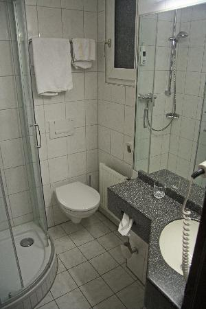 Hotel Sion: The bathroom, a perfectly adequate size!
