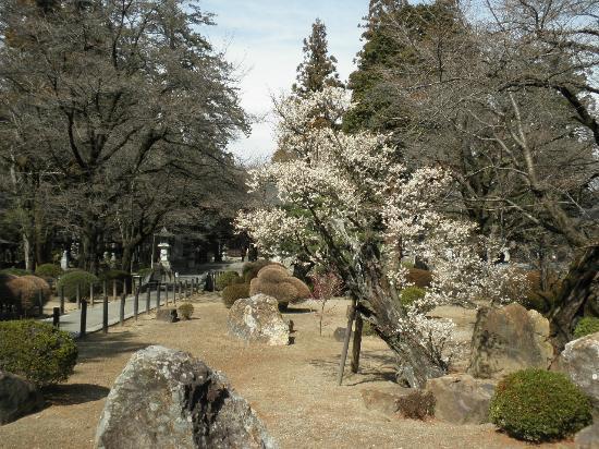 Koshu, Japón: 庭園
