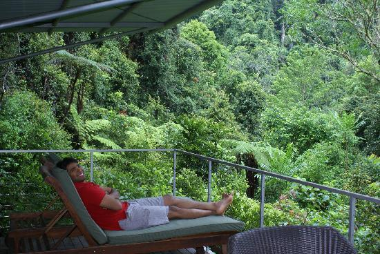 Crystal Creek Rainforest Retreat: A view from Balcony