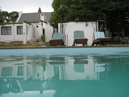 Elianthe's Guesthouse: Salt water pool
