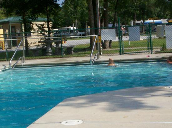 Brunswick Beaches Camping Resort: part of the pool