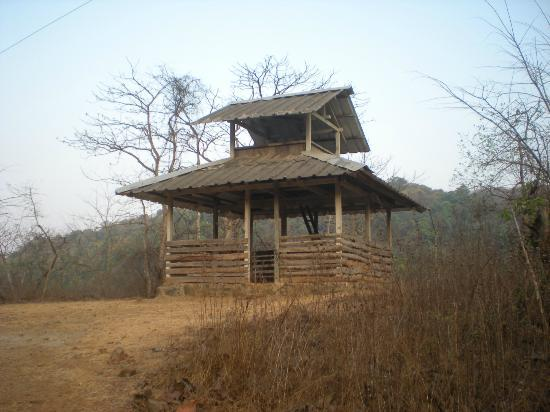 Karnala Bird Sanctuary: Bird blind