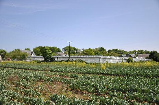 Woodview Farmhouse張圖片