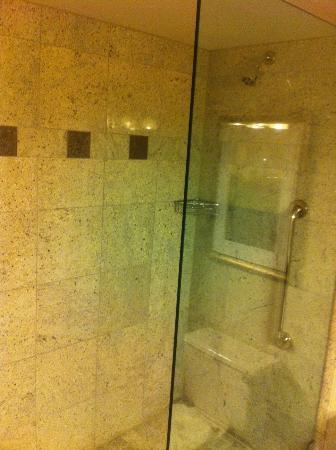 Hilton New York JFK: Walk in shower