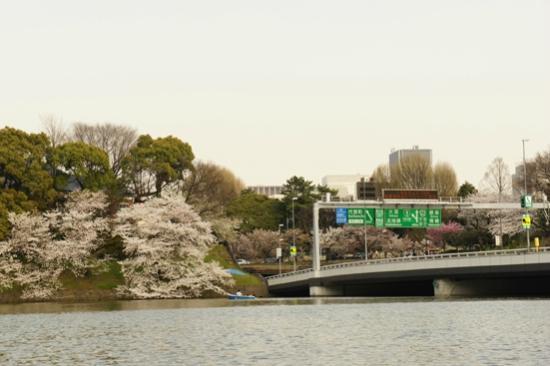 Chidorigafuchi: 高速道路と千鳥ヶ淵