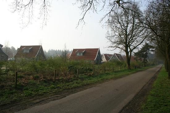 Haarle, The Netherlands: The view looking across the road into the main Landal park.
