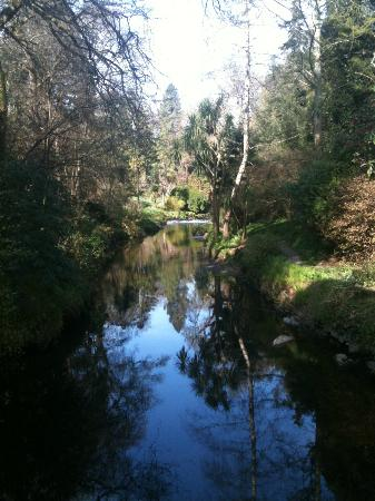 Mount Usher Gardens: Favourtie view of the river