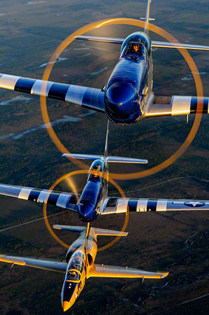 Kissimmee, FL: Stallion 51 offers orientation flights in the P-51 Mustang and the L-39 Jet.