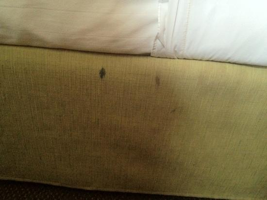 Microtel Inn & Suites by Wyndham Springfield: large stains on the bedding