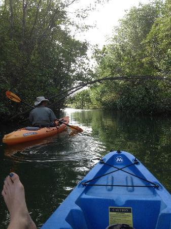 Costa Rica Yoga Spa : Kayak tour