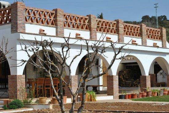 Finca Los Pinos Guesthouse: Los Pinos