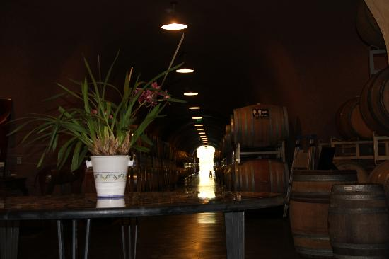 Sonoma Valley: Sonoma winery