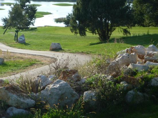 Golf Club Adriatic: course