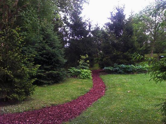 Jardín Botánico Atlántico: pradera