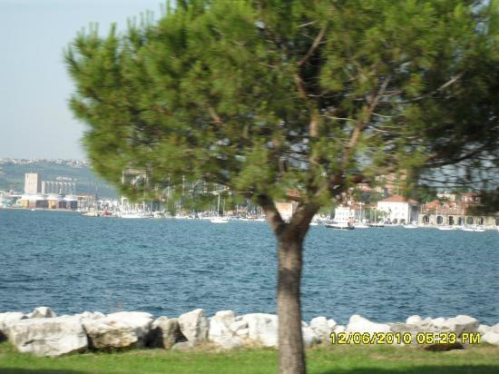 Umag, Kroatien: ferien in savudrija kann nur sagen genial .