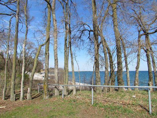 Hilton Garden Inn Toronto / Burlington: Uferpromenade Ontariosee - Burlington