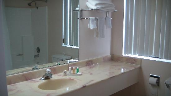 Palomar Inn: oversize vanity