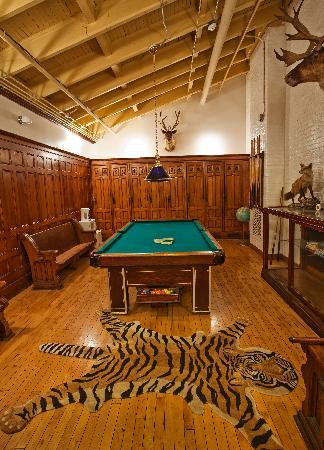 Amsterdam Castle B&B: Billiard Room
