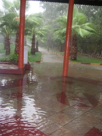 Club Verano: потоп