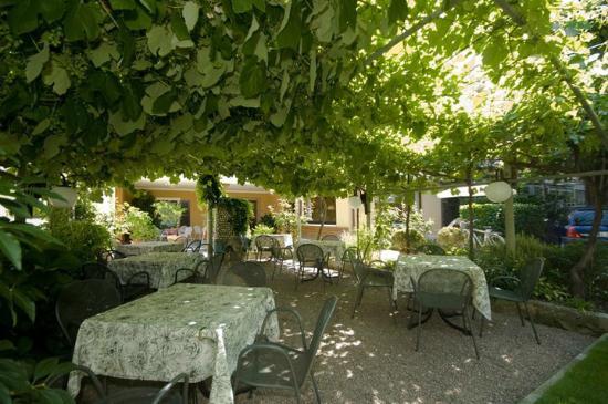 Garni Ischia: ........Bel giardino dove gustare la colazione!