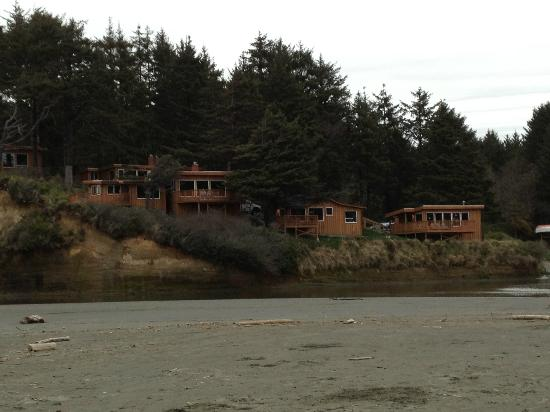 Copalis Beach, WA: Cabins as they are seen from the beach